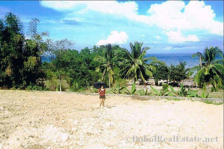 FOR SALE Beach Lot for Resort Hotel Mall or shopping center Siquijor Philippines-001