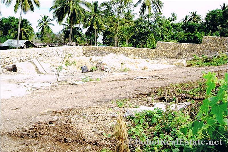FOR SALE Beach Lot for Resort Hotel Mall or shopping center Siquijor Philippines-003.jpg