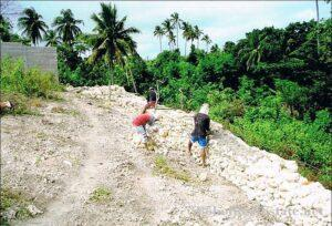 FOR SALE Beach Lot for Resort Hotel Mall or shopping center Siquijor Philippines-005.jpg
