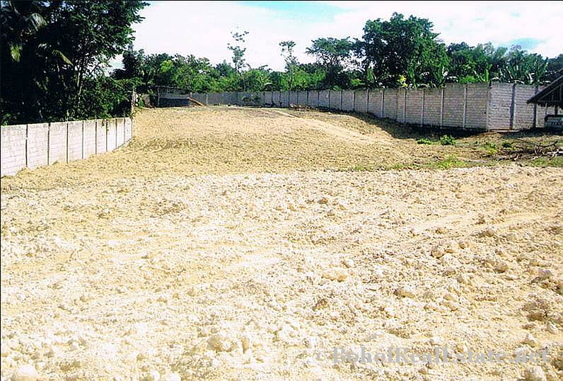 FOR SALE Beach Lot for Resort Hotel Mall or shopping center Siquijor Philippines-008.jpg