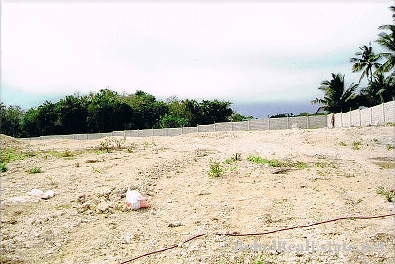 FOR SALE Beach Lot for Resort Hotel Mall or shopping center Siquijor Philippines-009.jpg