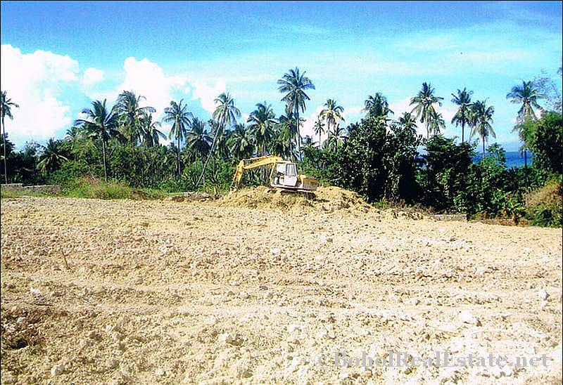 FOR SALE Beach Lot for Resort Hotel Mall or shopping center Siquijor Philippines-010.jpg