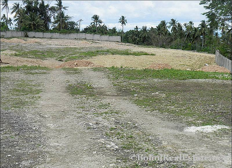 FOR SALE Beach Lot for Resort Hotel Mall or shopping center Siquijor Philippines-012.jpg