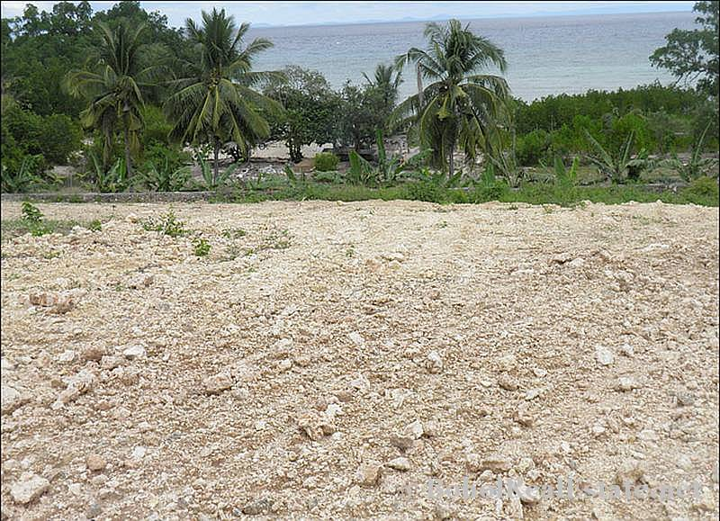 FOR SALE Beach Lot for Resort Hotel Mall or shopping center Siquijor Philippines-013.jpg