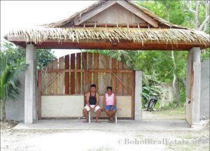 FOR SALE Beach Lot for Resort Hotel Mall or shopping center Siquijor Philippines-016.jpg