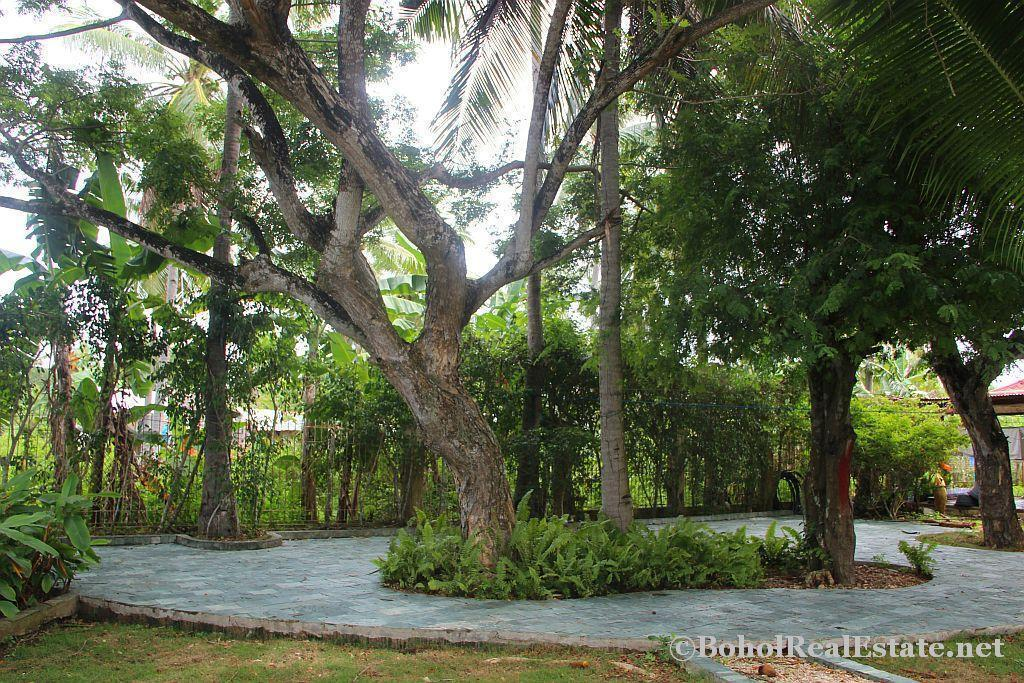HOUSE AND LOT DANAO PANGLAO BOHOL RUSH SALE Philippines-037.jpg