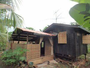 House and lot for sale Daorong Danao Panglao.JPG