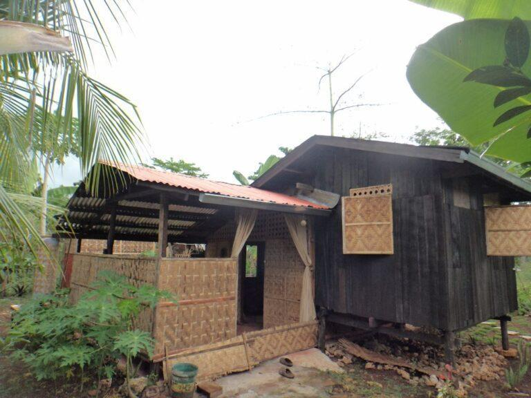 House and lot for sale Daorong Danao Panglao