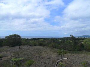Lot-for-Sale-in-San-Roque-Baclayon-Bohol