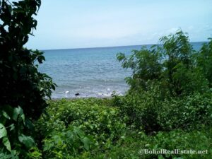 beachfront lot For Sale in Guindulman Bohol Philippines-005.jpg