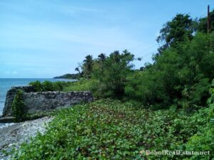 beachfront lot For Sale in Guindulman Bohol Philippines-009.jpg