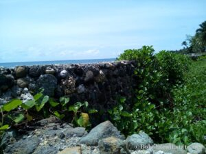 beachfront lot For Sale in Guindulman Bohol Philippines-012.jpg