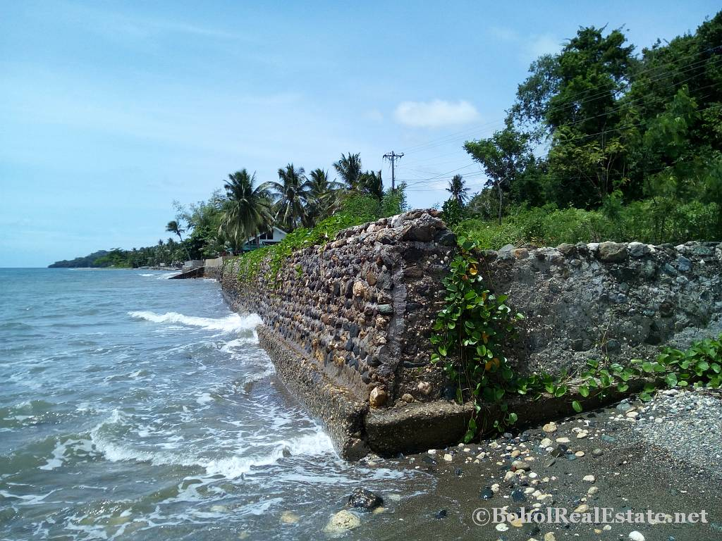 beachfront lot For Sale in Guindulman Bohol Philippines-015.jpg