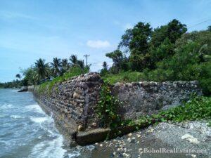 beachfront lot For Sale in Guindulman Bohol Philippines-016.jpg