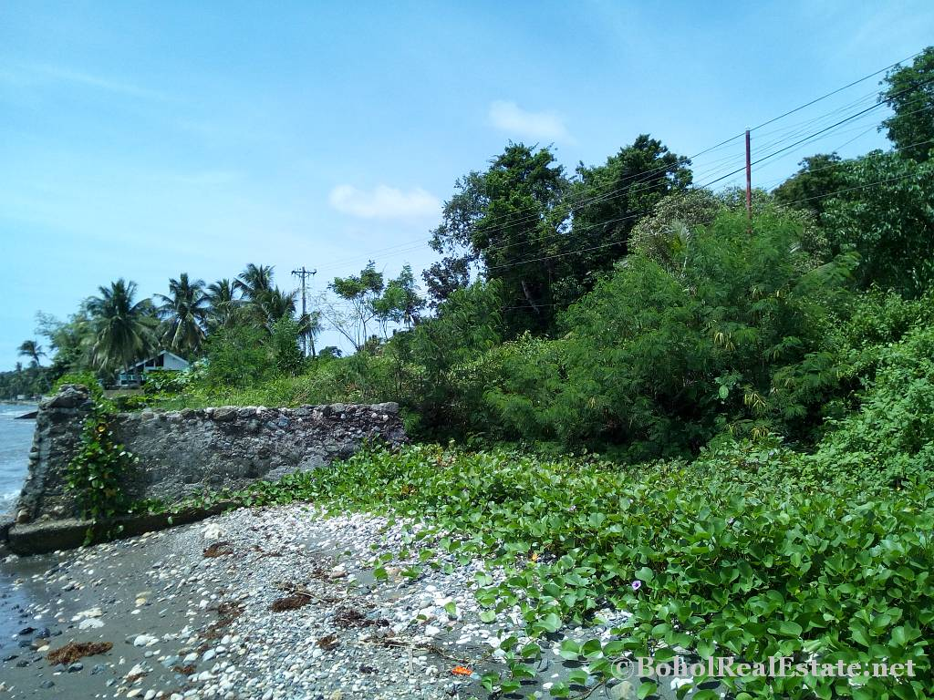 beachfront lot For Sale in Guindulman Bohol Philippines-017.jpg