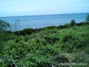 beachfront lot For Sale in Guindulman Bohol Philippines-023.jpg