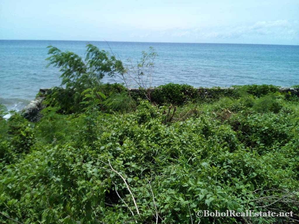 beachfront lot For Sale in Guindulman Bohol Philippines-024.jpg