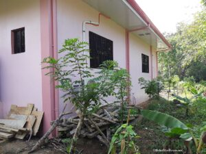 cheap house for sale in catigbian bohol-010.jpg