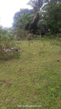large lot for sale in Panglao Bohol-003.jpg