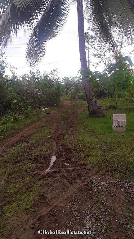 large lot for sale in Panglao Bohol-004.jpg