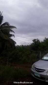 large lot for sale in Panglao Bohol-007.jpg
