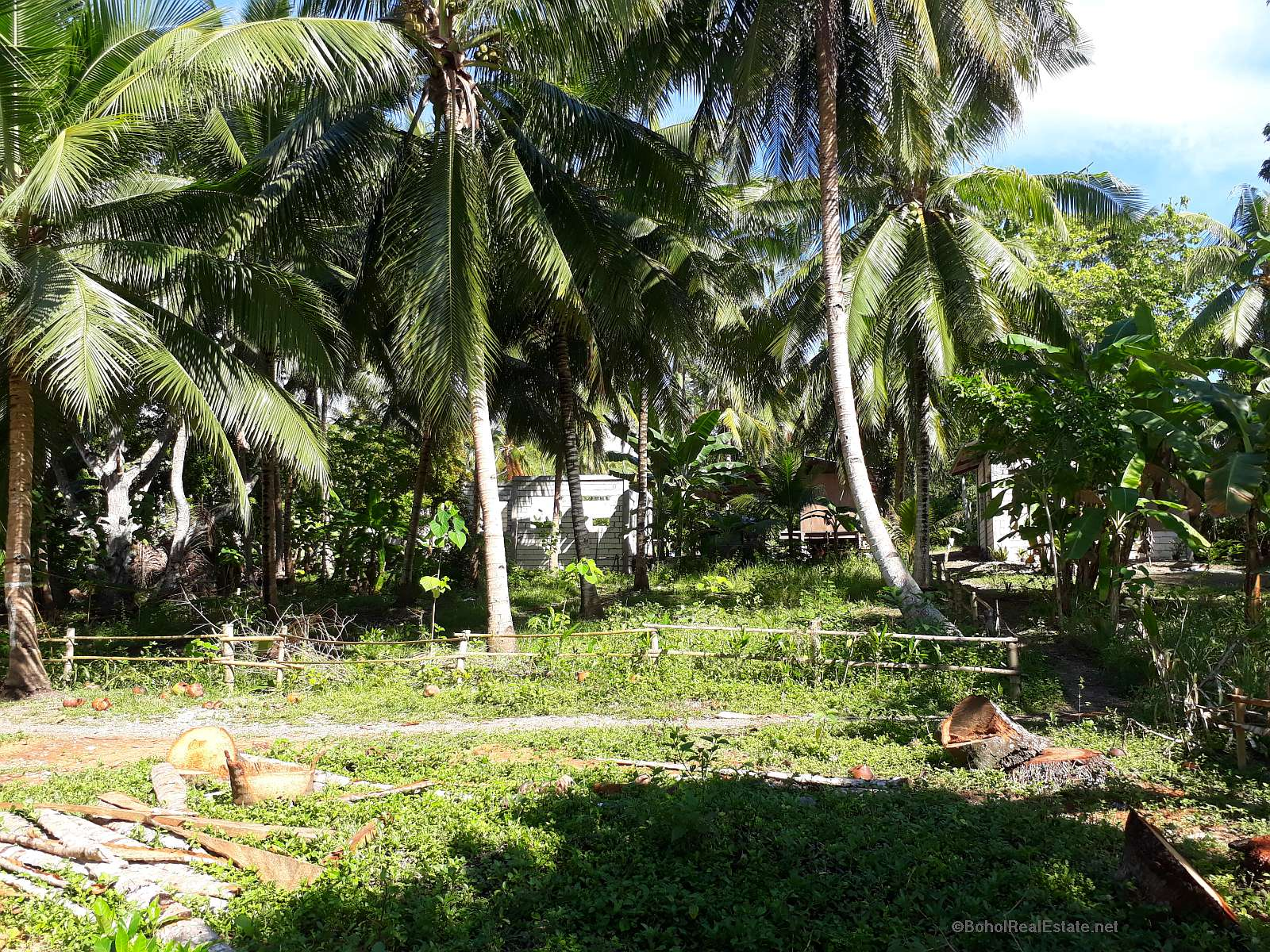 Language In 45 And 47 Stella Street: Lot For Sale In Catarman, Dauis, Panglao, Bohol « Bohol