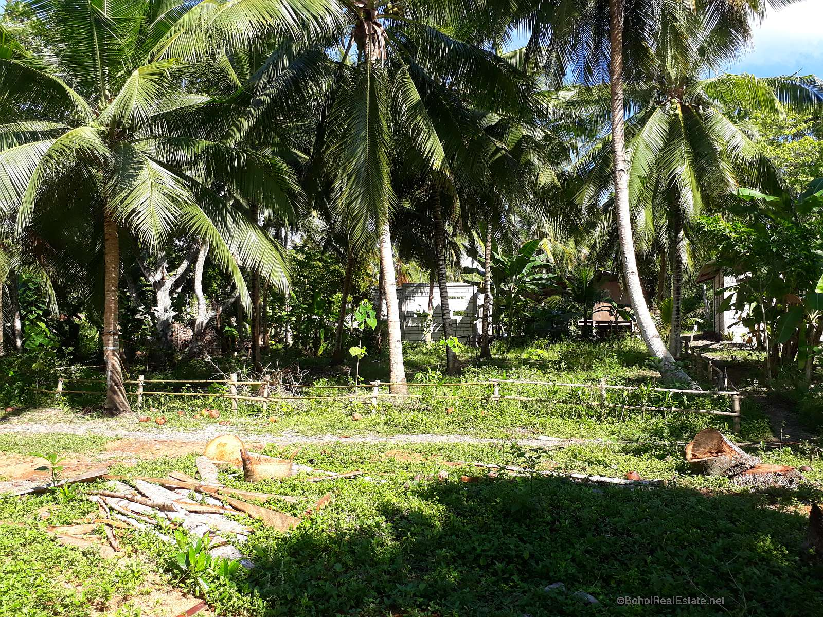 lot for sale Panglao Bohol Philippines - 040.jpg