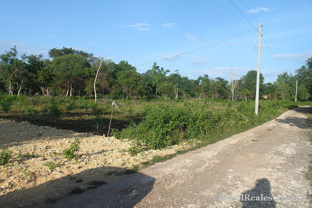 lot for sale dauis panglao bohol-002