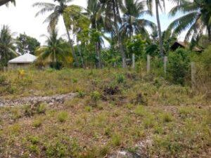 lot for sale in Catarman Dauis Panglao2.jpg